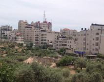 Palestine City Scape